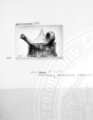 Thumbnail for Bestand-Microfiche-D-DAI-ROM-1695_B05.jpg